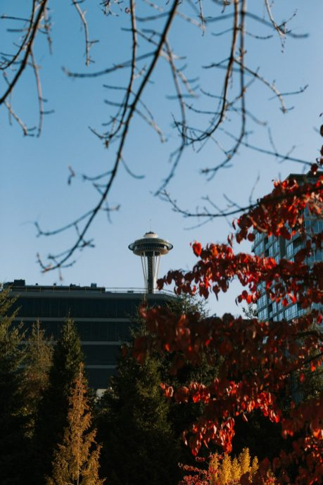 Cheap and affordable things to do in Seattle