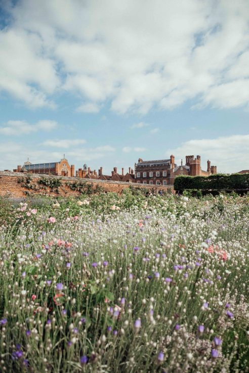 A day trip to Hampton Court Palace