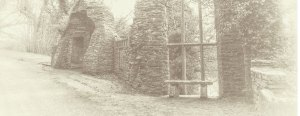 Twin Trees Heywood Festival - Ballinakill Heritage Festival