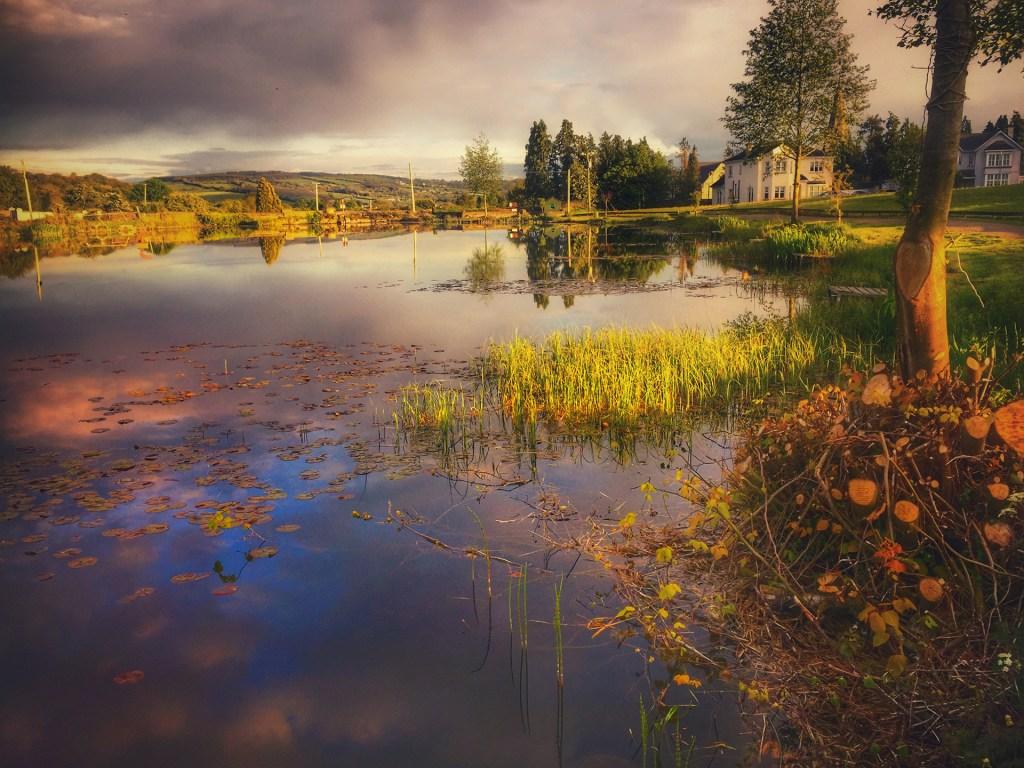 Gills Pond, Ballinakill