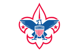 Cub scouts: Family Fun Night