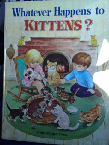 This book (Whatever Happens to Kittens).