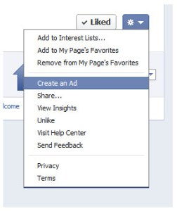 Segment pages on Facebook newsfeed