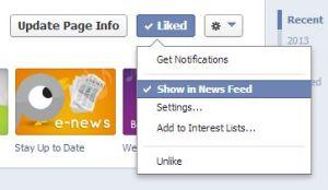 screenshot of Facebook Like Button