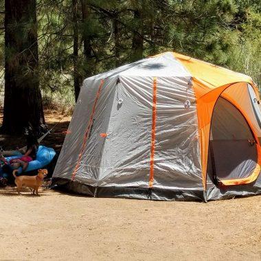 Coleman Octagon 98 Signature Tent