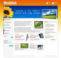Web design mockup for Neublick Pte Ltd