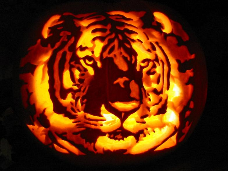 tiger-pupmpkin-carving