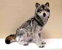 Incredibly Lifelike Animals Made from Pipe Cleaners ...