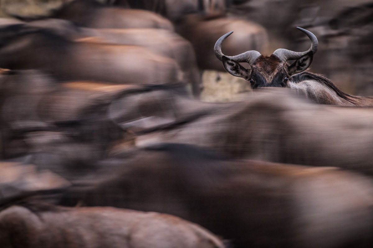 15 Stunning Entries From The 2015 Nat Geo Traveler Photo