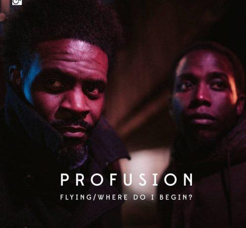 Profusion - Flying : Where Do I Begin?