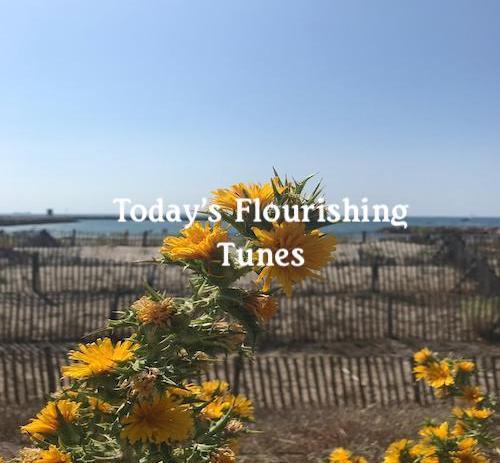 Playlist: Today's Flourishing Tunes.