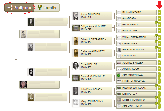 Pedigree view of my maternal ancestry