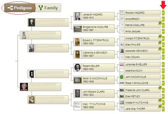 Pedigree view of my maternal ancestry