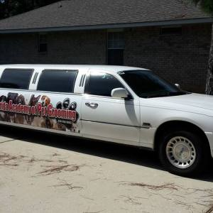 Partial Vehicle Wraps in Tennessee