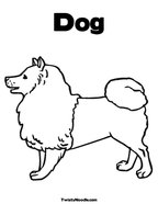 Poodle Puppies Coloring Pages