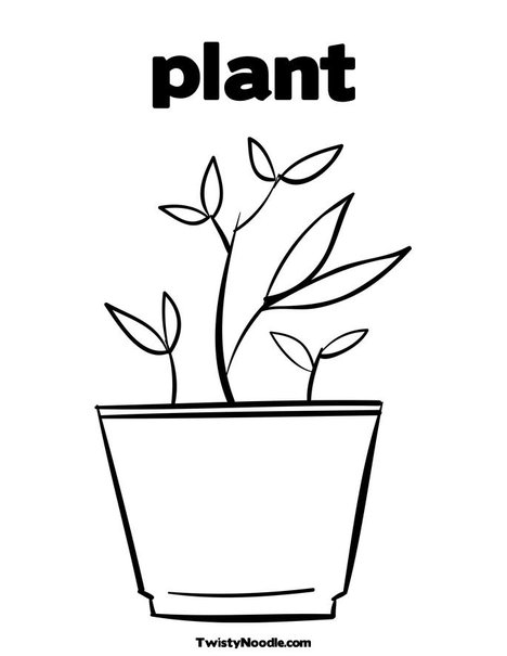 How to take care of plants: coloring page