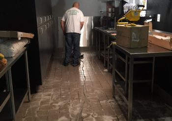 Blue Sushi Restaurant Floors Stripping and Sealing 001 e689c51113b598dfc3764b7846e4f604 350x245 100 crop Blue Sushi Restaurant Floors Stripping and Sealing