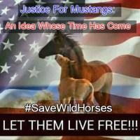 #SaveWildHorses -Justice For Mustangs Tweet Sheet