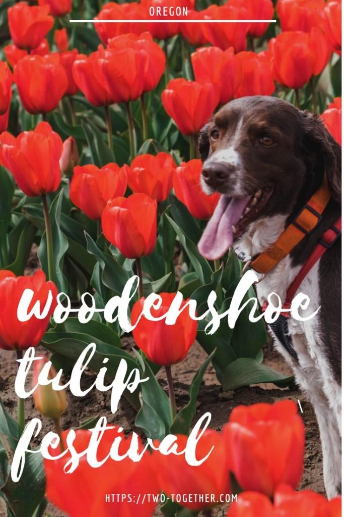 Woodenshoe Tulip Festival