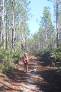 "12-mile Swamp hike. ""Where's the swamp?"""