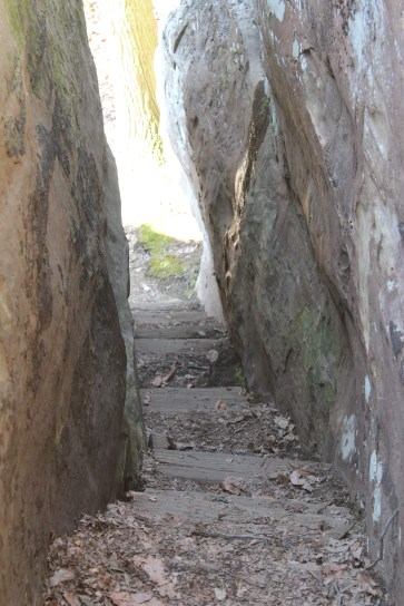 An unoccupied view of the same stairway.
