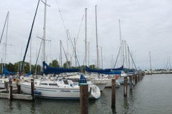 Some of the sailing fleet, Commodore Herzog would be envious, right Chuck?