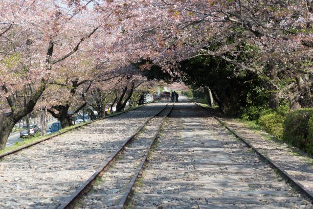 2014.04.11 (Kyoto) - 0013