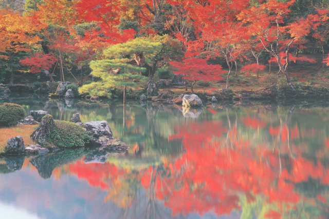A sneak preview of our next  visit - we'll be back for Autumn in Kyoto someday