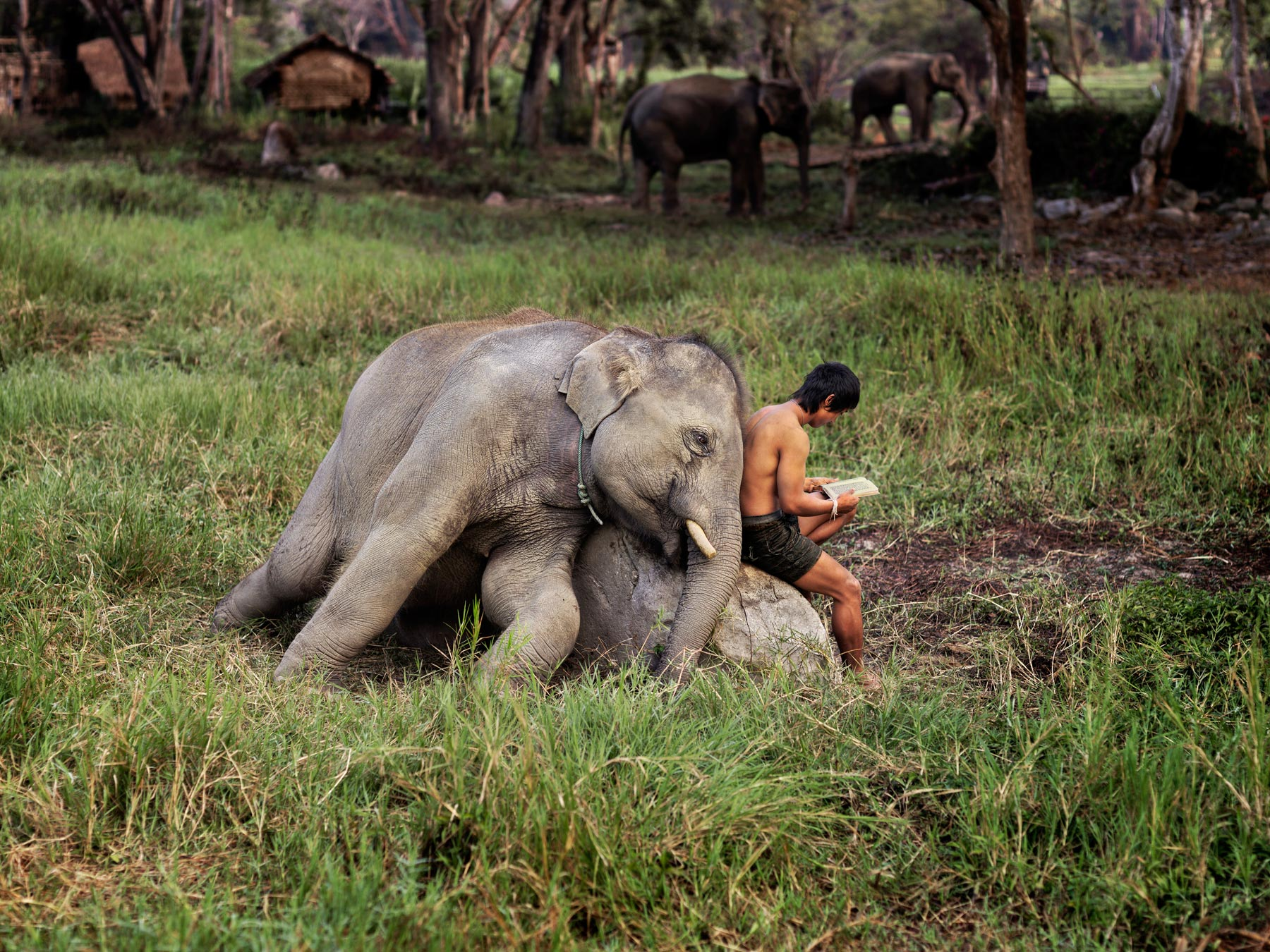 Steve McCurry photo from Thailand.