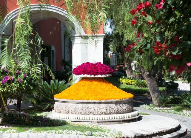 The Rosewood Hotel in San Miguel de Allende is beautifully landscaped.