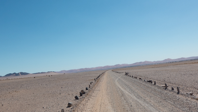 Driving the the Namib-Naukluft National Park, we notices some brown specks at 10 o'clock that seemed to be moving.