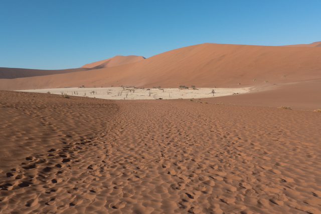 Deadvlei is nestled in the midst of the highest dunes of the Namib Naukluft National Park. The white limestone clay floors and fossilized trees over 900 years old give it an eerie, but peaceful sense of calmness. The name 'Deadvlei derives from two languages English 'Dead' and Afrikaans 'Vlei' meaning 'Lake of Marsh or hollow'. As you clamper over the dunes to the view of Deadsvei, the name really gives you the impression of a 'lake with dead trees floating' as the heat rises over the floor giving the area a mirage effect.