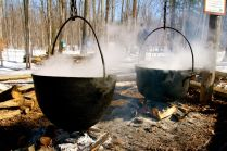 The old way to get maple syrup out of sugar water