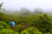 Climbing down the other side of Sierra Negra
