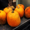 Delivering the pumpkins inside the condo