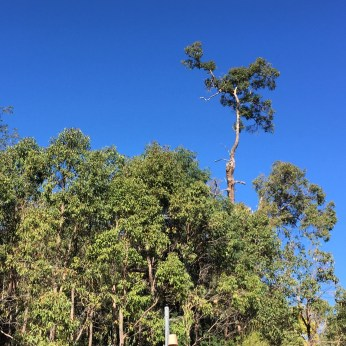 That big blue Australian sky