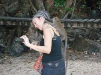 E o ataque dos macacos e bobeou eles pulam em você. São bonzinhos.