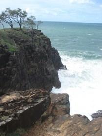 Oysters Rocks
