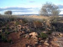 No meio da natureza dá oportunidade para grandes fotos da paisagem vista lá de cima