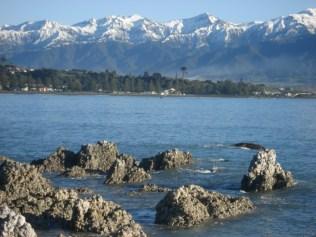 Chama-se Seaward Kaikoura Mountains