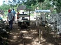 Truck com o respectivo cavalo