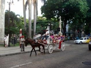 Por toda a cidade essas charretes enfeitadas oferecendo passeios