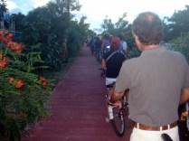 Já quase chegando em Xcaret, pela ciclofaixa, em fila