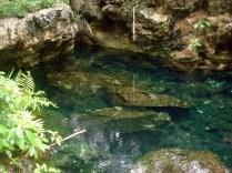 Água clara e transparente