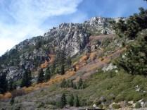 E o outono terminando e colorindo tudo