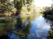 Rio de águas limpas e cristalinas