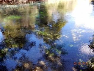 E flutuar nessa água cristalina sendo levado pela correnteza