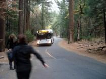 E o ônibus para voltar até o carro