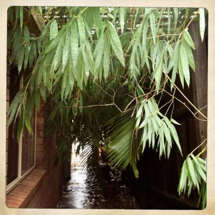 Bamboo annexe