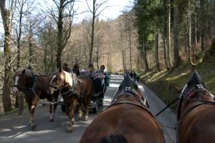 The road to Neuschwanstein Castle